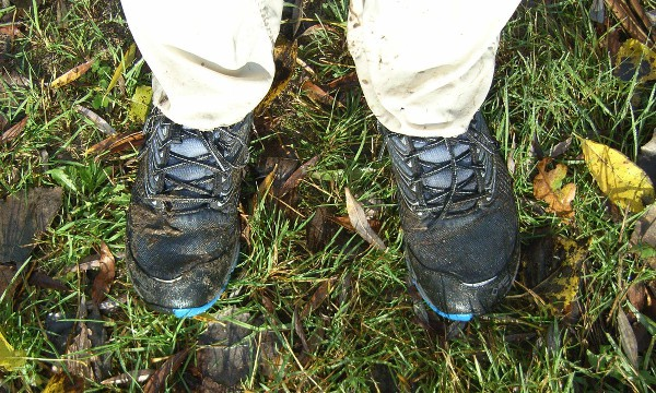 Merrell Ascend Glove Gore-Tex - In the mud