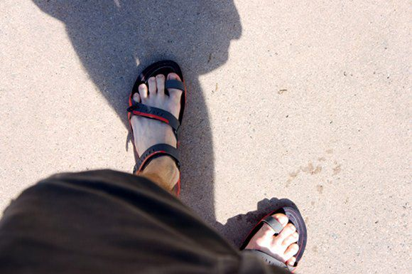 3cfe33453 A Review of the Teva Zilch
